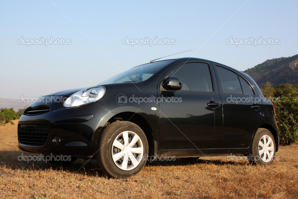 A black hatchback car parked in the countryside grass. — Stock Photo #9400584