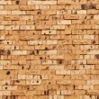 Beige Or Tan Brick Wall — Stock Photo #8763909