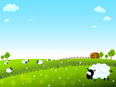 Sheep on meadow — Stock Vector