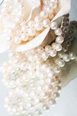 White pearl — Foto Stock