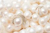 白珍珠 — 图库照片