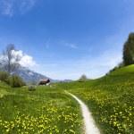 paysage de printemps dans les montagnes, les mines terrestres antipersonnel — Photo