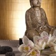 Buddha statue with orchid flower — Foto Stock