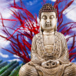 Zen of a buddha — Stock Photo #8832167