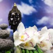 Zen of a buddha - Stock Photo