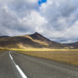 Road on Iceland — Stock Photo #8835836