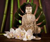 Bambù e statua di buddha — Foto Stock