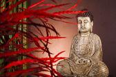 Zen buddha statue — Stock Photo