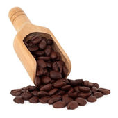 Coffee Beans — Foto Stock