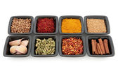 Exotic Spices and Herbs — Stock Photo