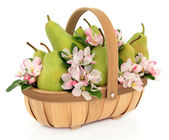 Pear Fruit and Blossom — Stock Photo