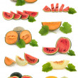 Melon Fruit Collection — Stock Photo