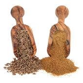 Cumin Seed and Powder — Stock Photo