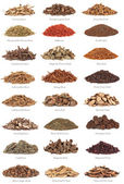 Chinese Herbal Medicine with Titles — Stock Photo
