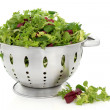 Lettuce Salad Leaves - Stock Photo