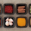 Stock Photo: Spice Sampler