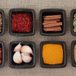 Spice Sampler — Stockfoto #9704275