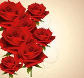 Bakgrund med rosor — Stockvektor