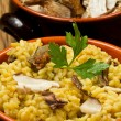 Risotto with saffron and mushrooms — Stock Photo #10195427