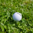 Golf Ball on the Green Grass — Stockfoto #10576115