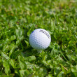 Golf Ball on the Green Grass — Stock Photo #10576115