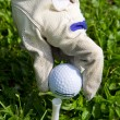 Placing golf ball on a tee — Stock Photo #10576223