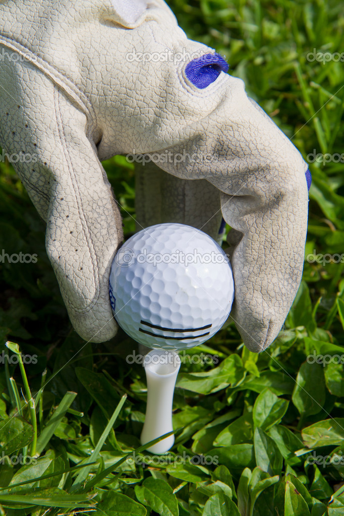 Placing golf ball on a tee  — Stock Photo #10576210
