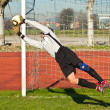 Soccer football goalkeeper — Stock Photo #7994242