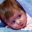 Baby looking out from under blanket — Stock Photo #8749165