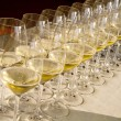 Stock Photo: Row of wine glasses
