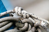 A group of sailor' s white knot — Stock Photo
