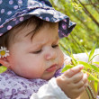 Baby playing with blade of grass — Stock Photo