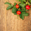 Dog rose on a wooden surface — Stock Photo