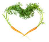 Two carrots — Stock Photo