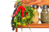Bouquet of fresh spice — Stock Photo