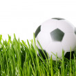 Soccer ball — Stockfoto #9505187