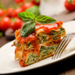 Homemade Lasegne with Ricotta Cheese and Spinach — Stock Photo #8509460