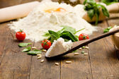 Ingredients for Homemade Ravioli — Stock Photo