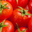 Tomato background - Stock Photo