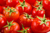 Tomato background — Stockfoto