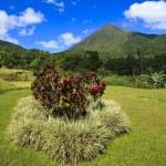 Arenal National Park — Stock Photo