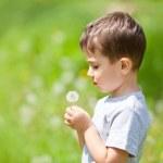 Boy and dandelion — Stock Photo