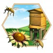 Bee hive - Stockfoto
