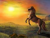Rising horse — Stock Photo
