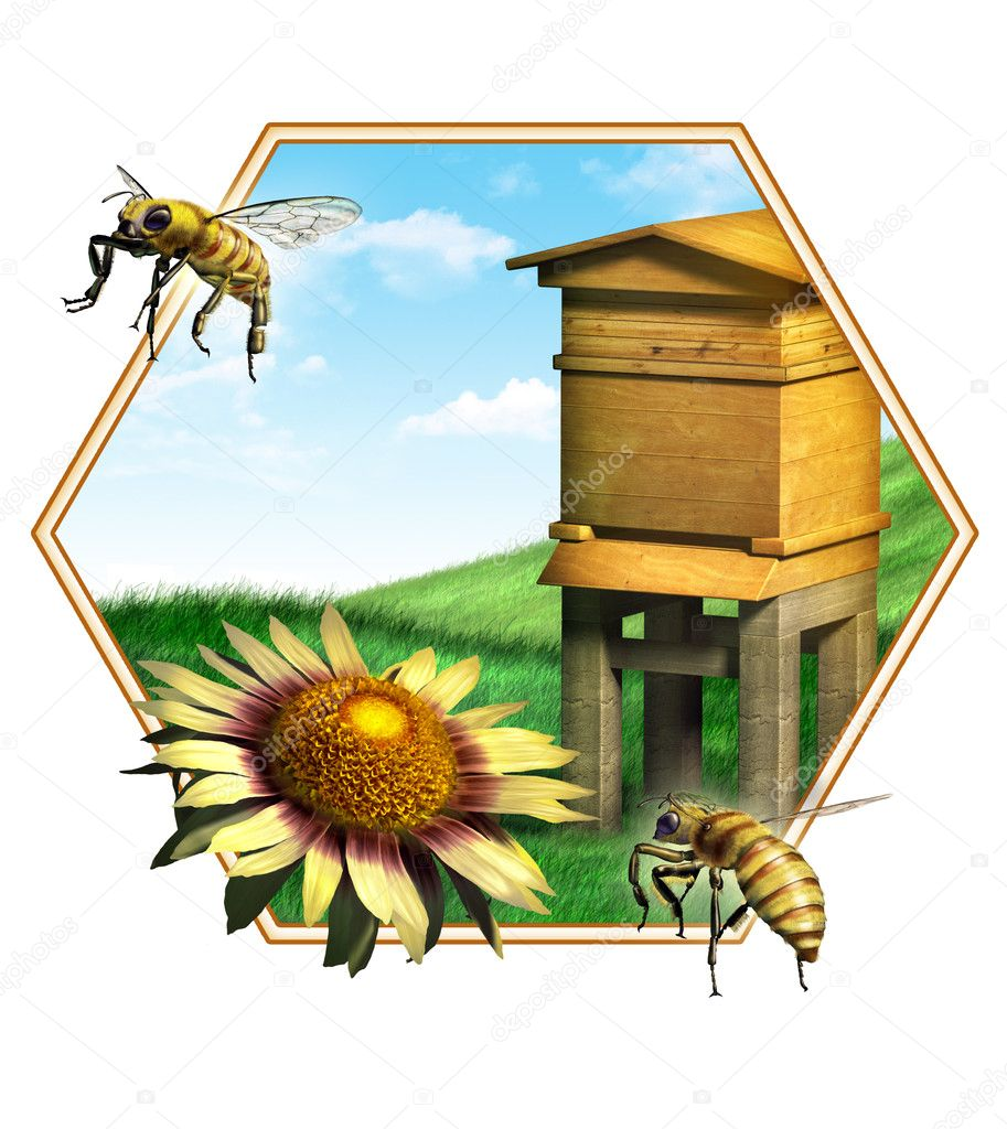 Nice composition of some bees, a flower and an hive. Suitable for food labels. Digital illustration.  Stock Photo #10153856