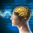 Brain waves - Stock Photo