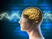 Ondas cerebrais — Foto Stock
