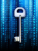 Data key — Stock Photo
