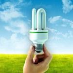 Energy saving bulb — Stock Photo
