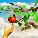 elma temptation — Stok fotoğraf